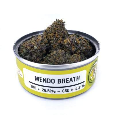 Space Monkey Meds Mendo Breath - The Balloon Room