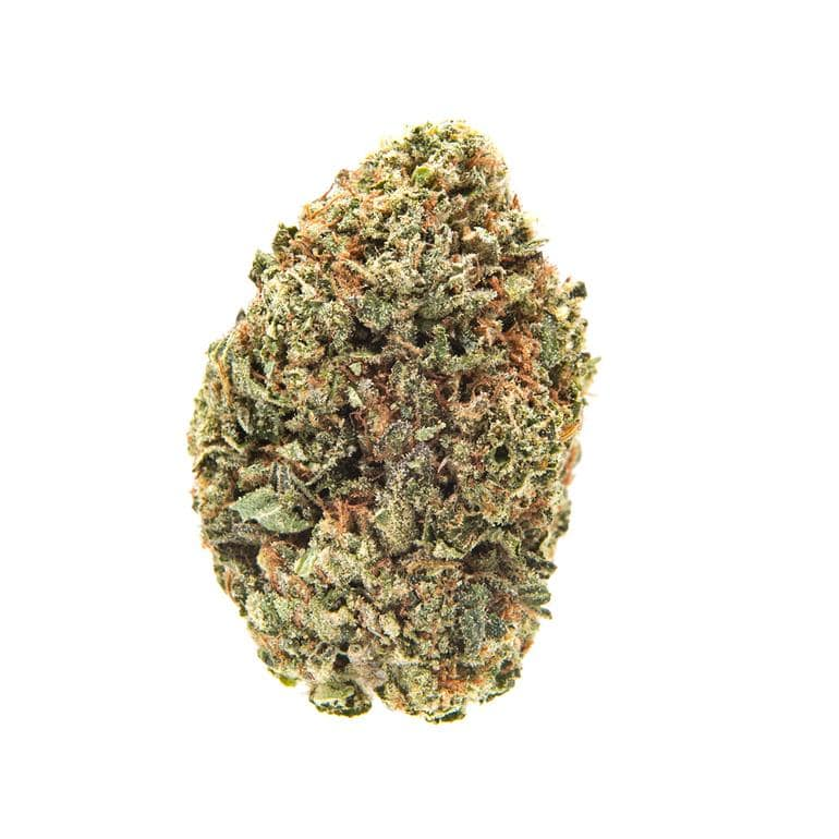 $200 OZ SPECIAL - The Balloon Room
