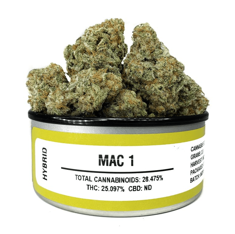 Space Monkey Meds MAC1 - The Balloon Room