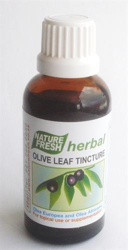 Natures Fresh Vitamins Nature Fresh Olive Leaf Tincture, 50ml 6009603090412 93906