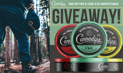 4/20/2020! WIN DIP FOR A YEAR SWEEPSTAKES