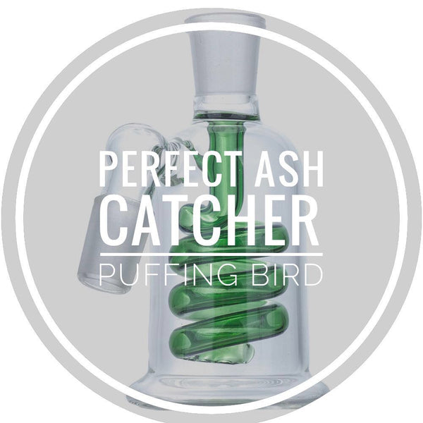 How To Pick The Perfect Ash Catcher For Bongs | Puffing Bird Wiki