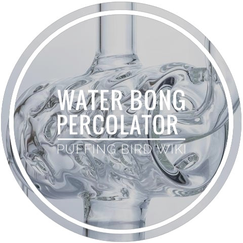 Water Bong Percolators Explained | Glass Bong Feature Review | PB Wiki