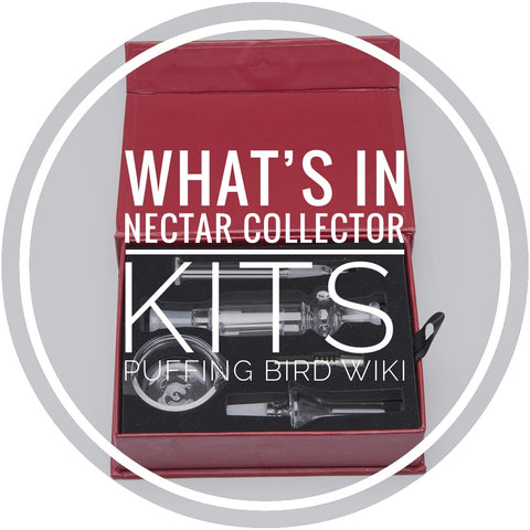 What's Included In Nectar Collector Kits? - Puffing Bird Wiki