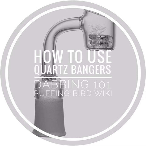 How To Use Quartz Bangers | Dabbing 101 | Puffing Bird Wiki