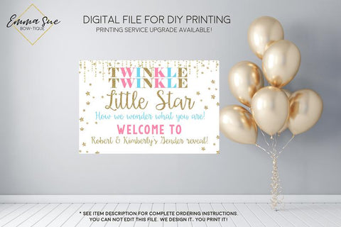 Pink & Blue Twinkle Twinkle Little Star Baby Gender Reveal Welcome Sign - Party Decorations  - Digital File
