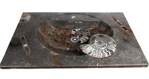 VERY RARE STUNNING Red Fossil Agate Sink #AA-1A
