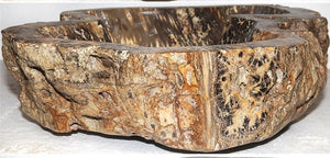 RARE Fossil Coral Sink #174B-EH Highly Agatized - Sold