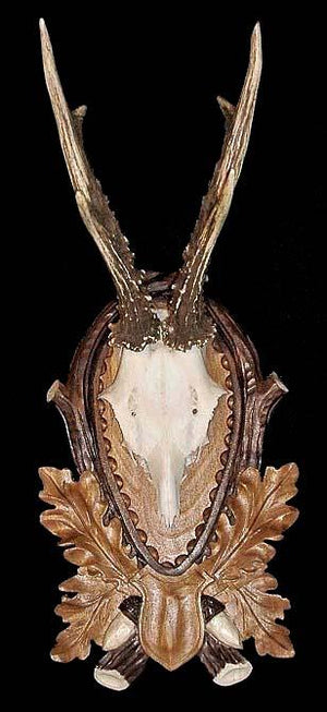 CP-102C - European Deer Skull Mount Panel