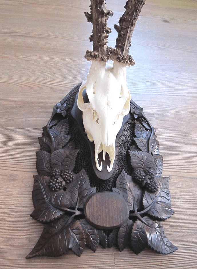 CP-103D - European Deer Skull Mount Panel