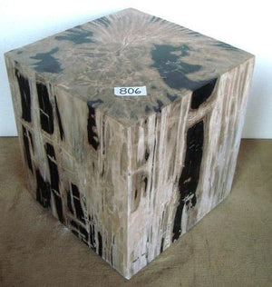 Petrified Wood Cube Side Table #806