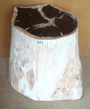 Petrified Wood Side Table #591-EH
