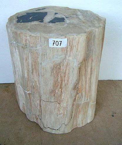 Petrified Wood Side Table #707-EH