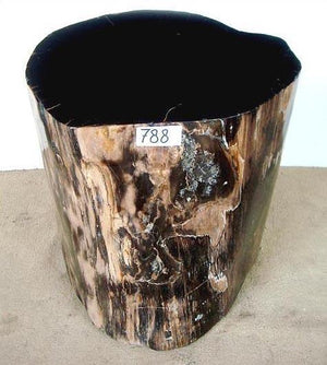 Petrified Wood Side Table #788-EH (18 tall x 18 x 15)