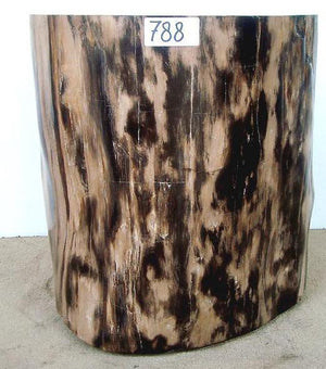 Petrified Wood Side Table #788-EH