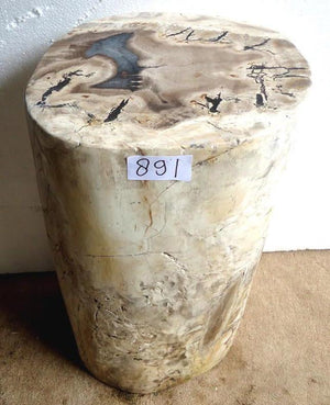 Petrified Wood Side Table #891-EH