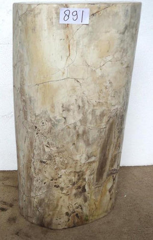 "Petrified Wood Side Table #891-EH (15"" x 13"" x 25"" Tall)"