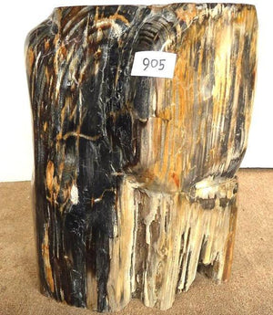 Petrified Wood Side Table #905-EH