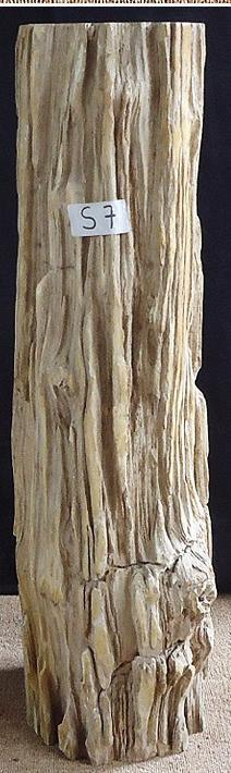 Petrified Wood Sculpture #007-A-EH