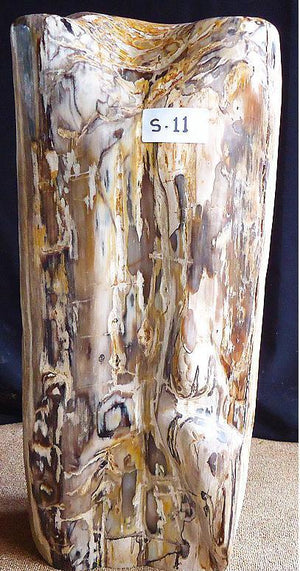 Petrified Wood Sculpture #011-EH (11 x 9 x 24.5 tall)