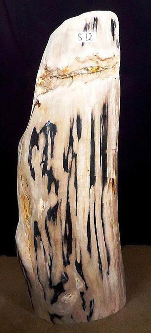 Petrified Wood Sculpture #012-EH (18 x 10 x 40 tall)