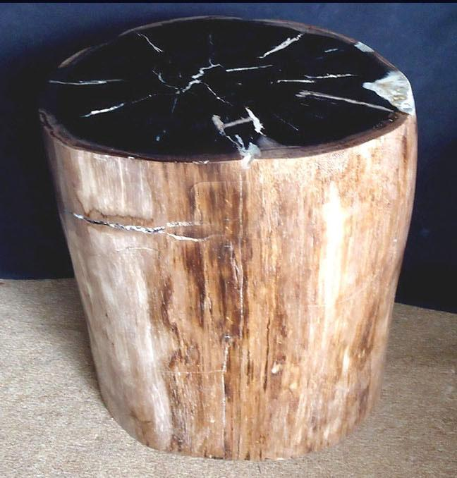 "Petrified Wood Side Table #866-EH (17.5"" x 16.5"" x 19.5"" tall }"