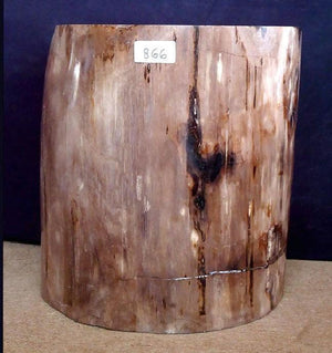 Petrified Wood Side Table #866-EH