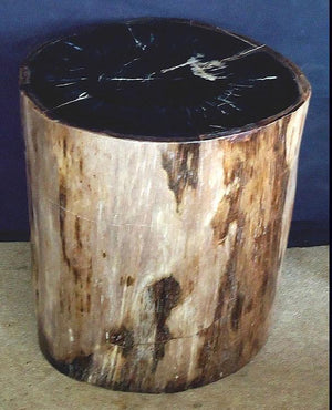 "Petrified Wood Side Table #867-EH (18"" x 17"" x 19.5"" tall)"