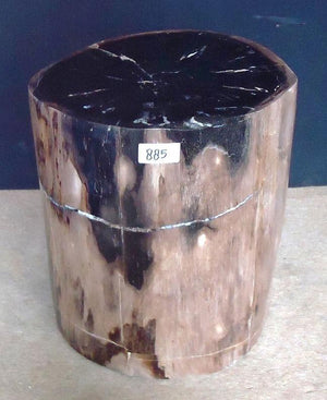 Petrified Wood Side Table #885-EH