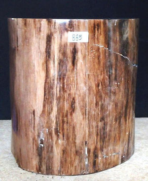 "Petrified Wood Side Table #885-EH (18.5"" x 18"" x 20"" tall) {Contact for Price}"