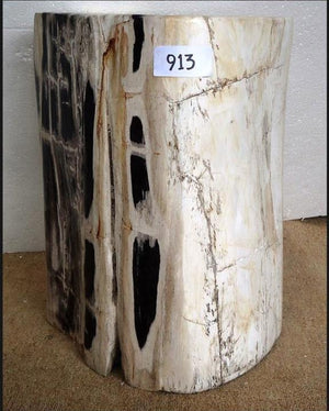 Petrified Wood Side Table #913-EH