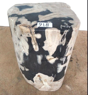 "Petrified Wood Side Table #918-EH (14"" x 12"" x 20"" tall)"