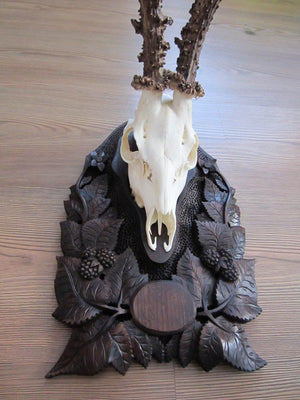 Black Forest Style Deer Mount with Ornate Hand Carved Panel