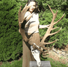 MONSTER  Red Stag Trophy #128 Massive 20 Points {FREE SHIPPING!}