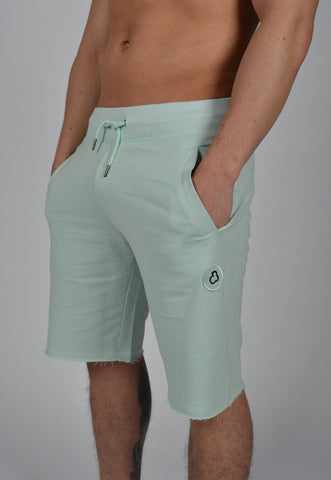 DB Label: JERSEY SHORTS - ASH GREEN