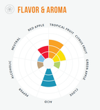 Wildbrew Philly Sour yeast flavor aroma wheel
