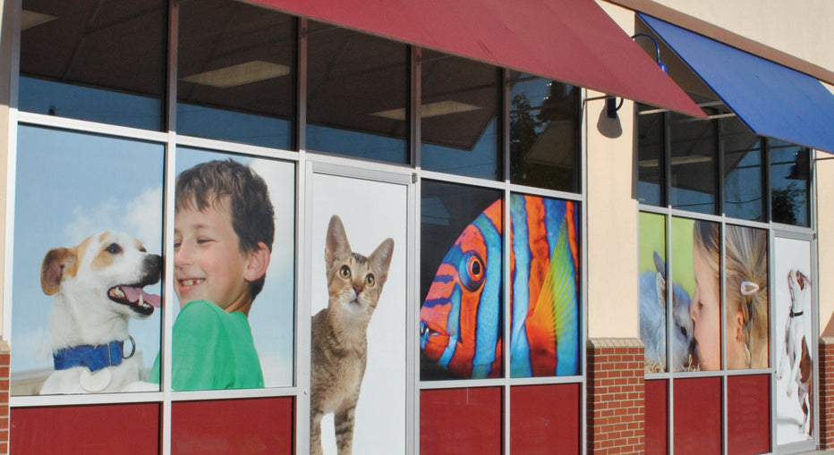 Full Color Window Clings created for Petland