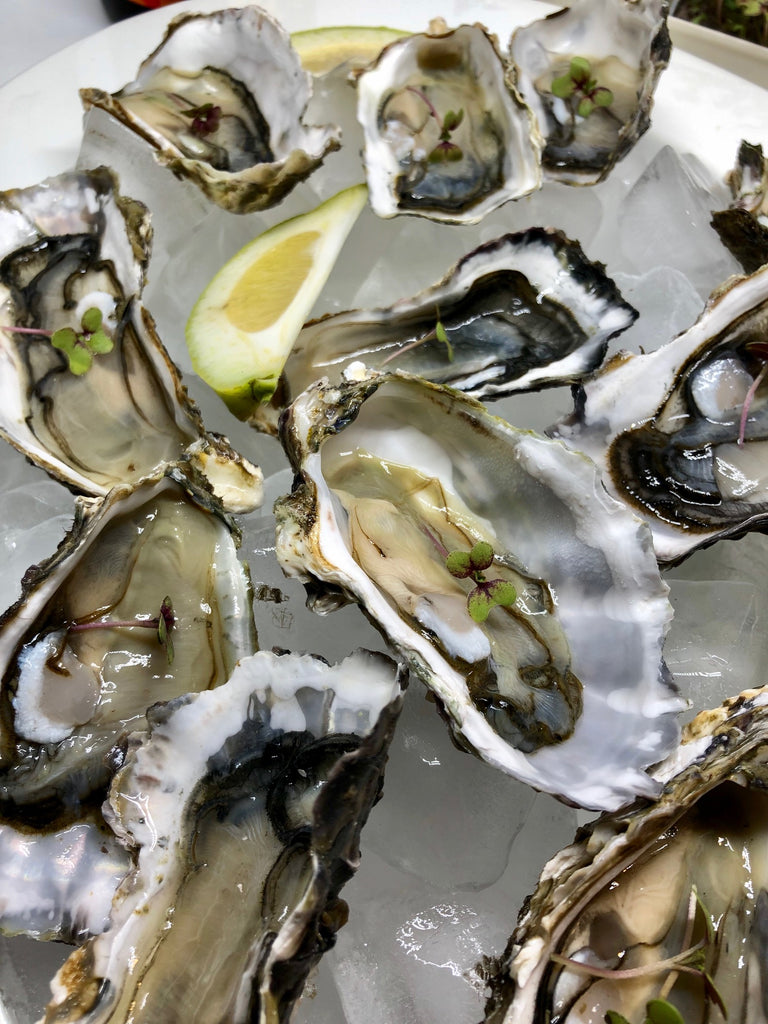Oysters and microgreens - match made in heaven?