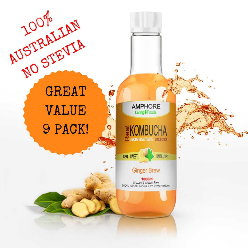 Blended Kombucha - Ginger Brew 1 Litre - Great Value 9 Pack - All Bodhi Health