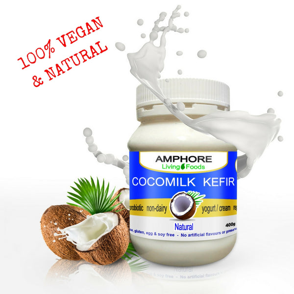 Vegan Cocomilk Kefir - All Bodhi Health