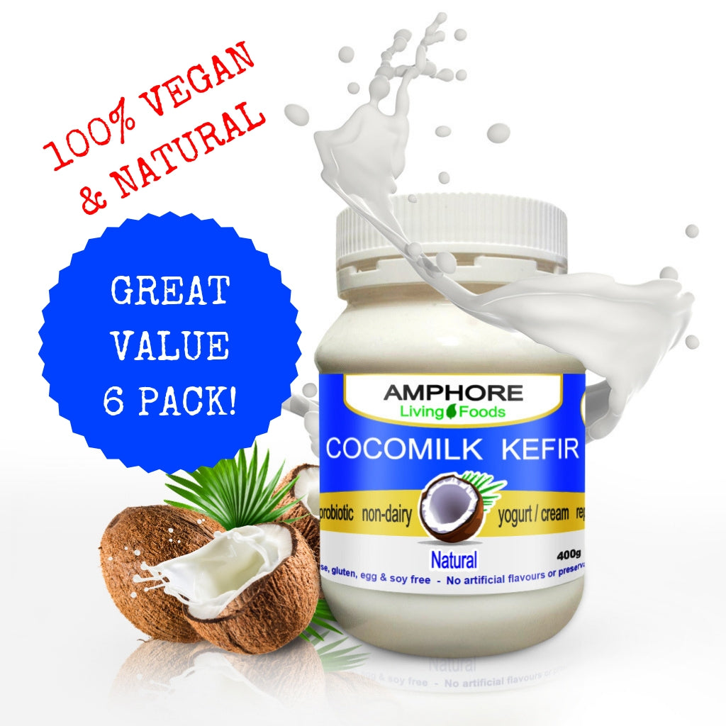 Vegan Cocomilk Kefir - Great Value 6 Pack - All Bodhi Health
