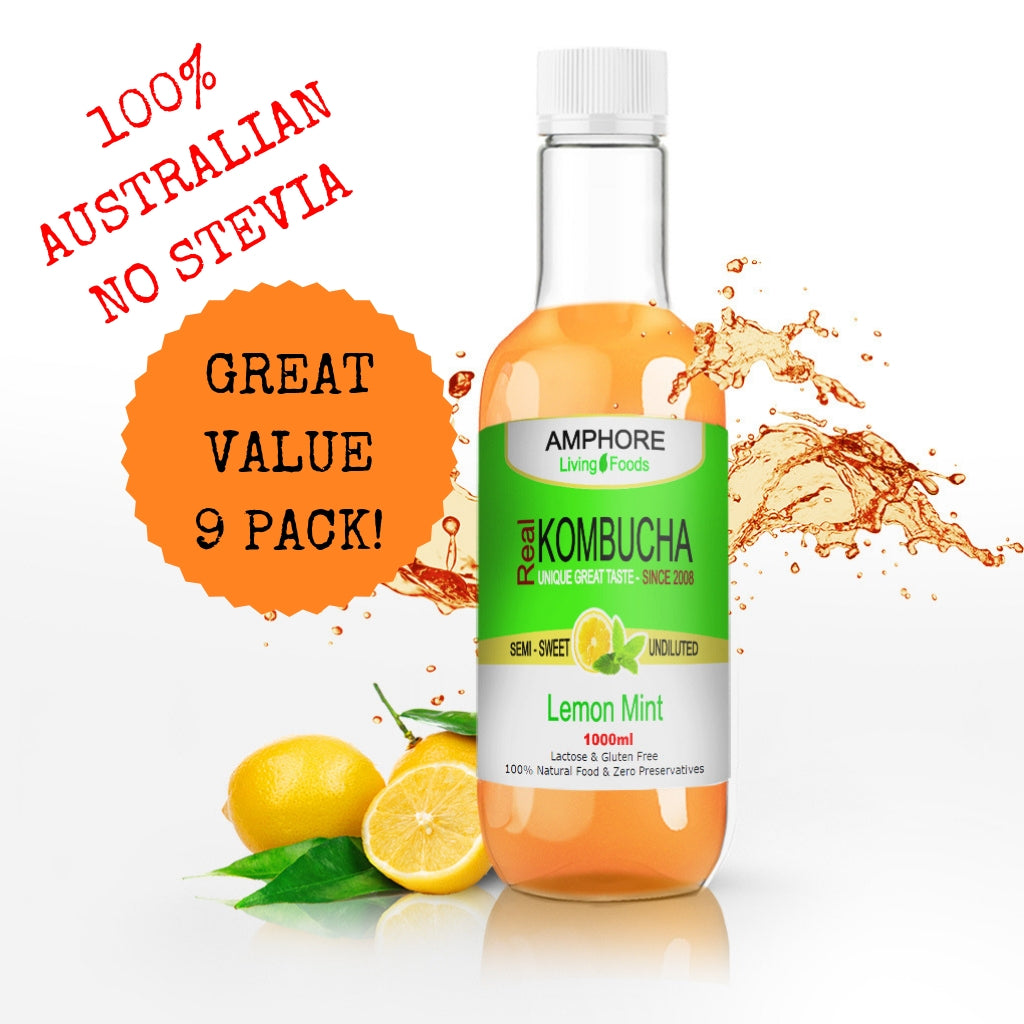 Blended Kombucha - Lemon Mint 1 Litre - Great Value 9 Pack - All Bodhi Health