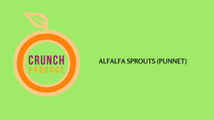 Alfalfa Sprouts (Punnet)