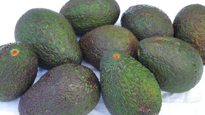 Avocado - Hass (Each)
