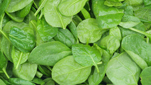 Baby Spinach (200 gram Bag)