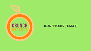 Bean Sprouts (Punnet)