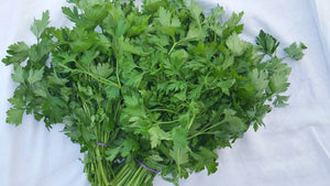 Flat Leaf Parsley (Bunch)