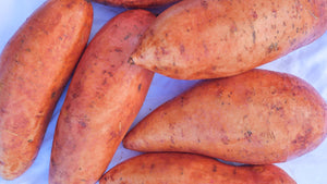 Gold Sweet Potato
