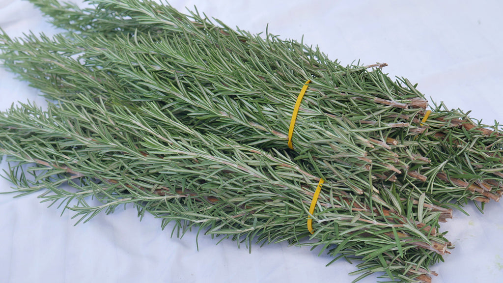 Rosemary (Bunch)