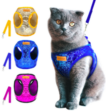 """The Glamorous"" Sequin Cat & Kitten Harness and Leash Set for Glamorous Adventure Cats"